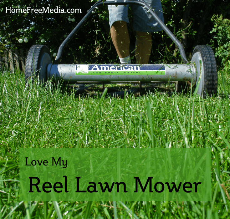 Love My Reel Lawn Mower