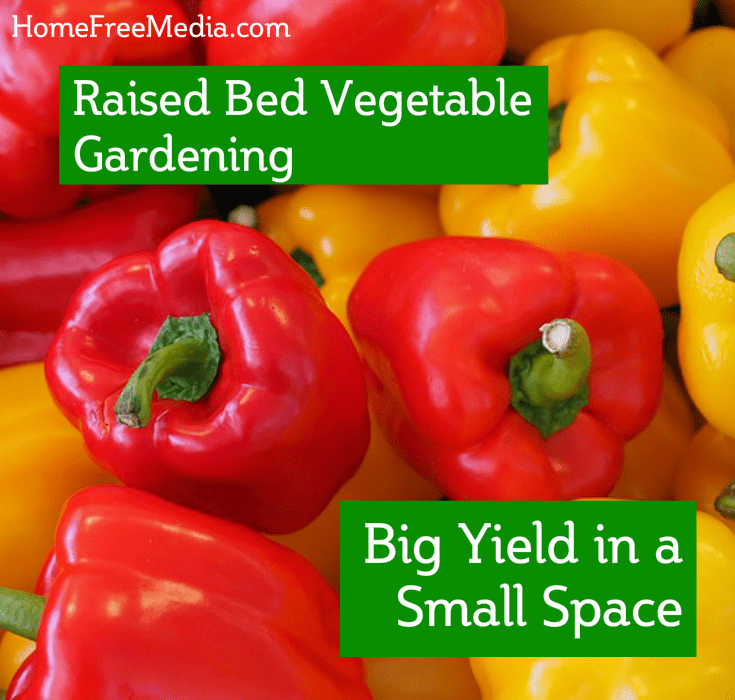 Raised Bed Vegetable Gardening – Big Yield in a Small Space