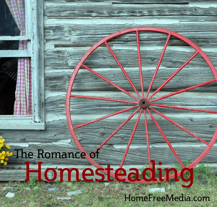 The Romance of Homesteading