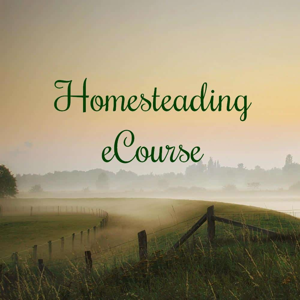 homesteading plr