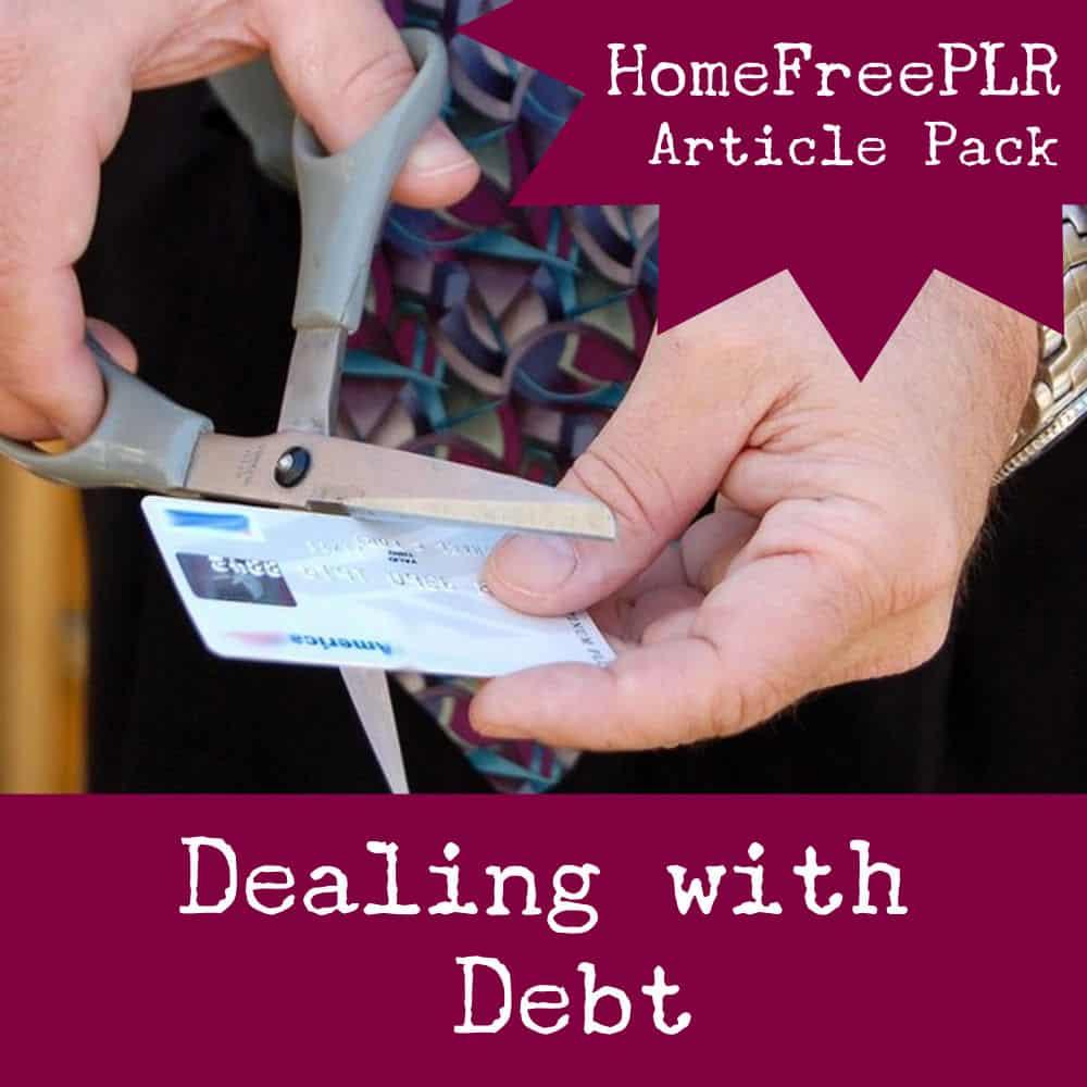 debt plr