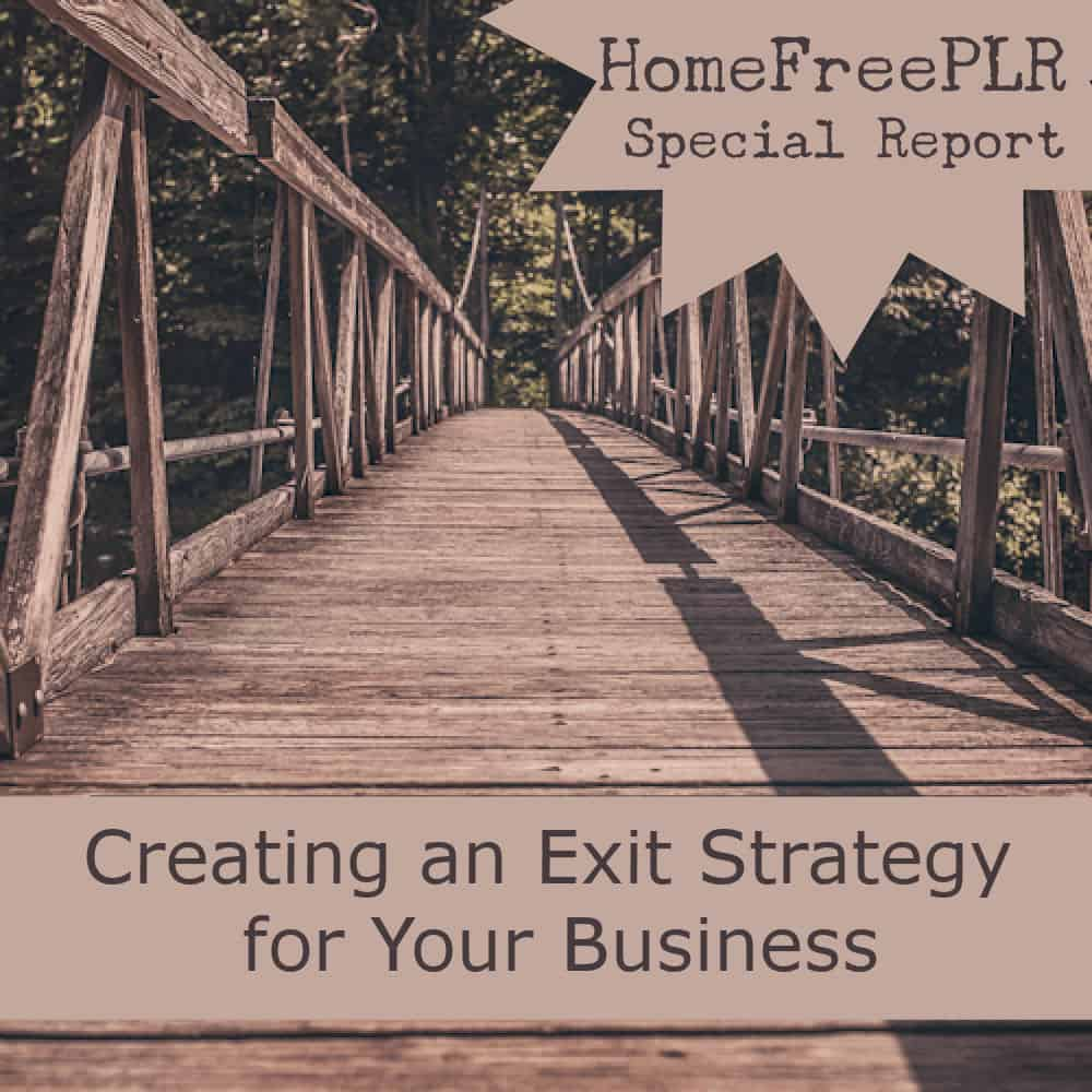 exit-strategy-plr-report