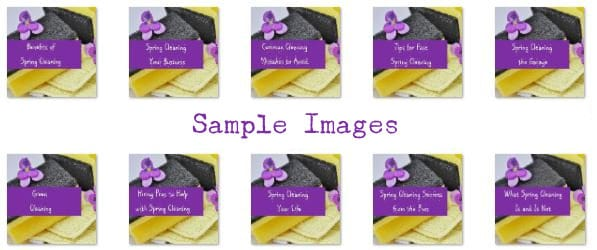 spring cleaning plr images