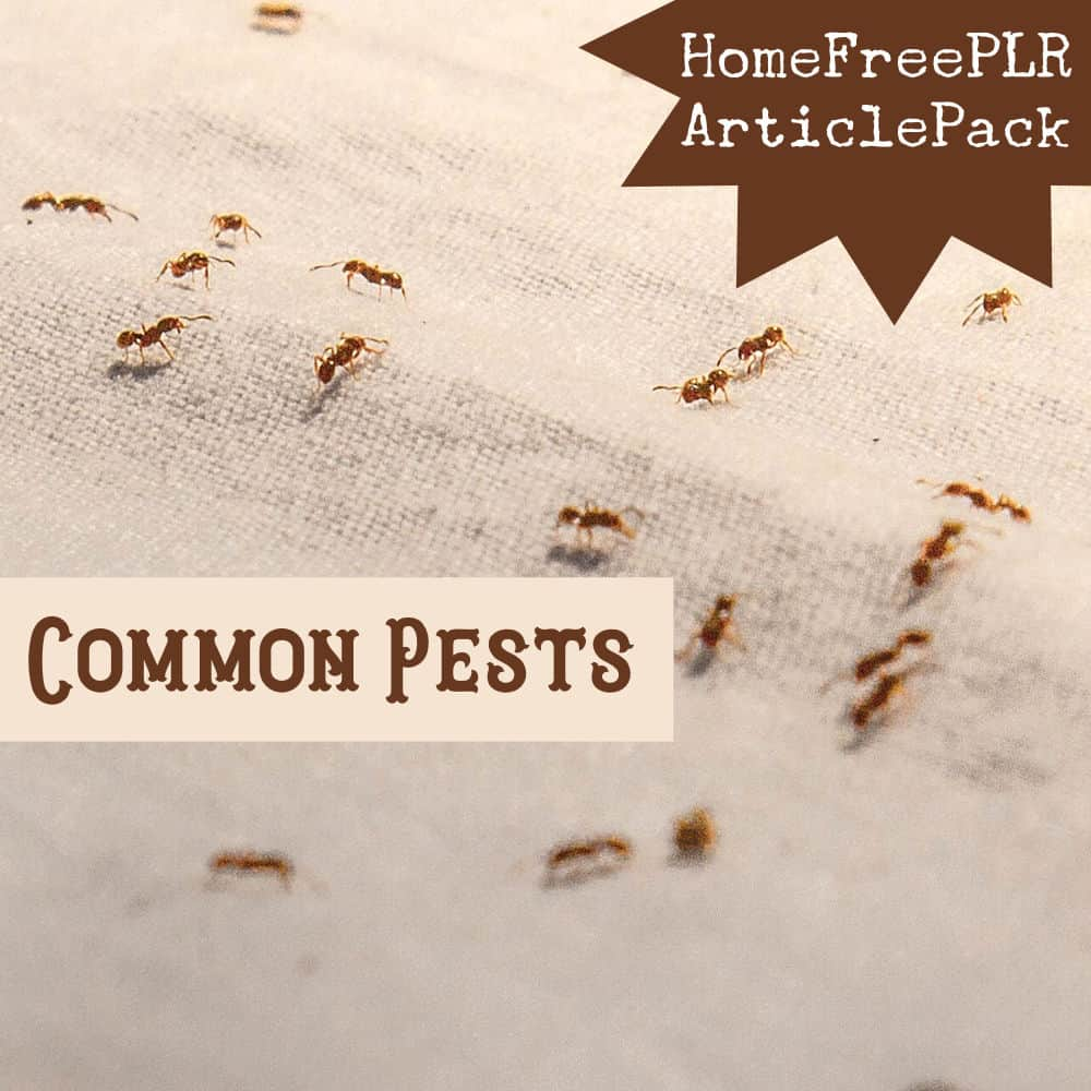 Common Pests PLR Article Pack