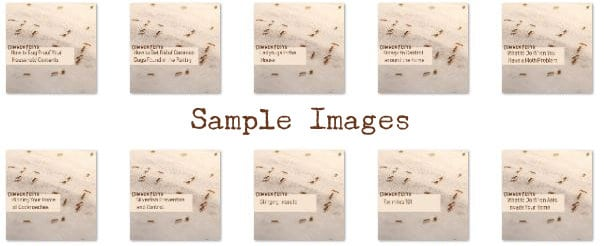 CommonPests-PLR-Sample-Images