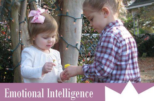 Emotional Intelligence in Children PLR Articles
