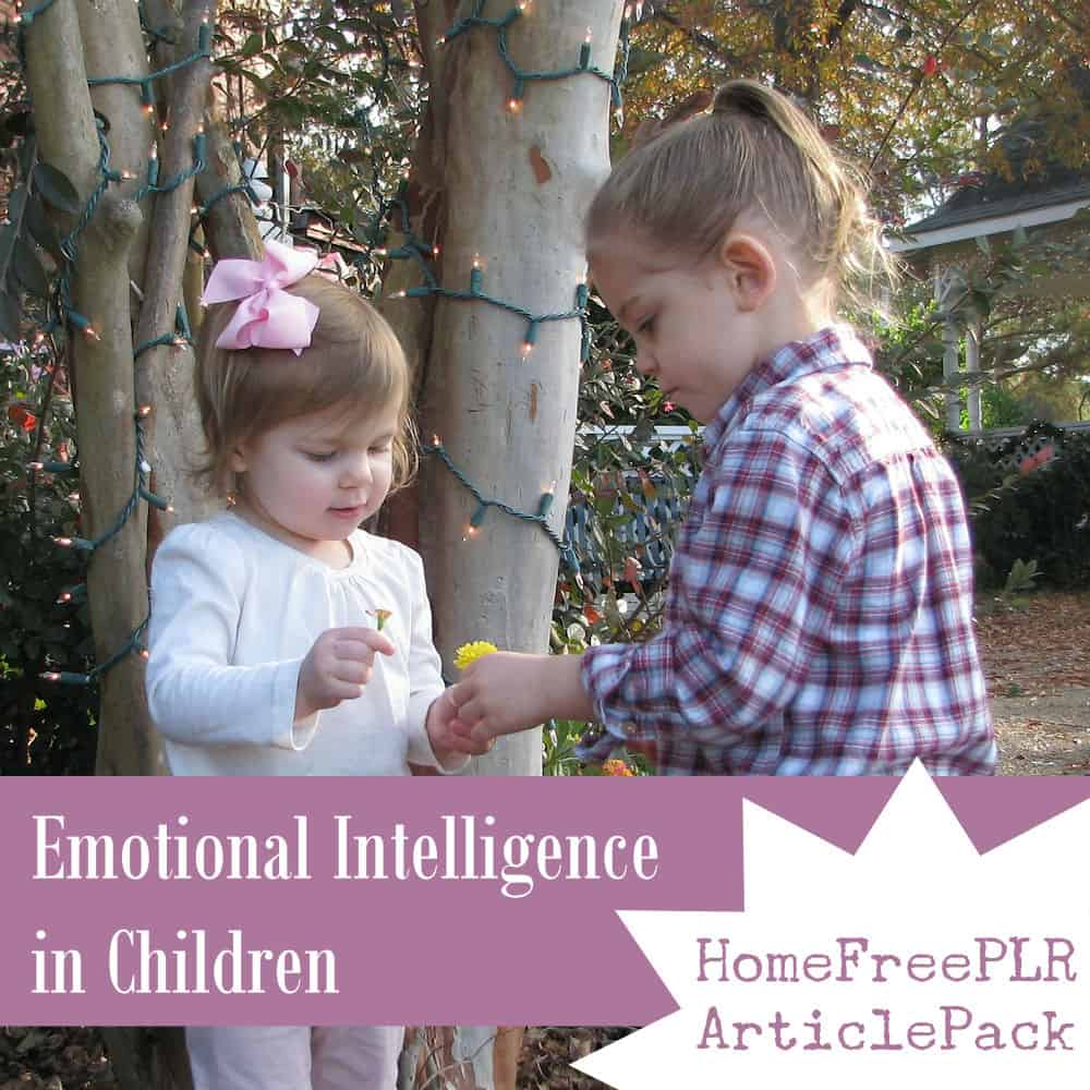 Emotional Intelligence in Children PLR Articles