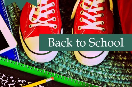 back to school plr article pack