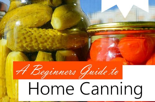 home canning plr