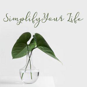 Simplify Your Life PLR ecourse