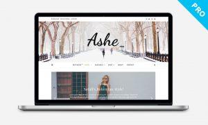 Ashe Pro Theme