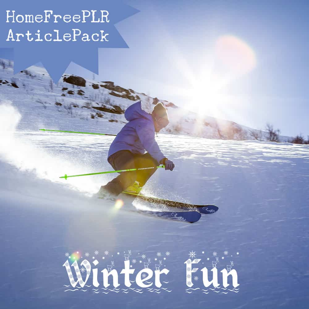 winter fun plr article pack
