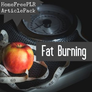fat burning plr articles