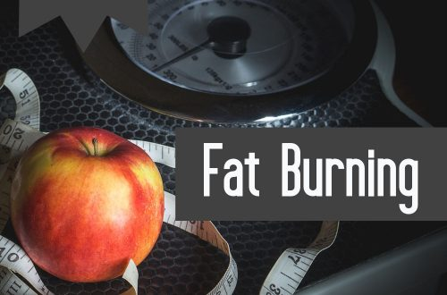 fat burning plr articles