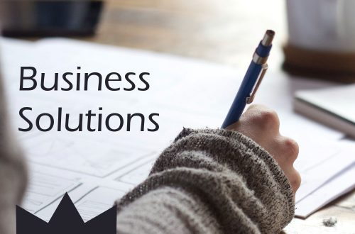 business solutions plr articles