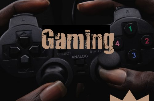 gaming plr