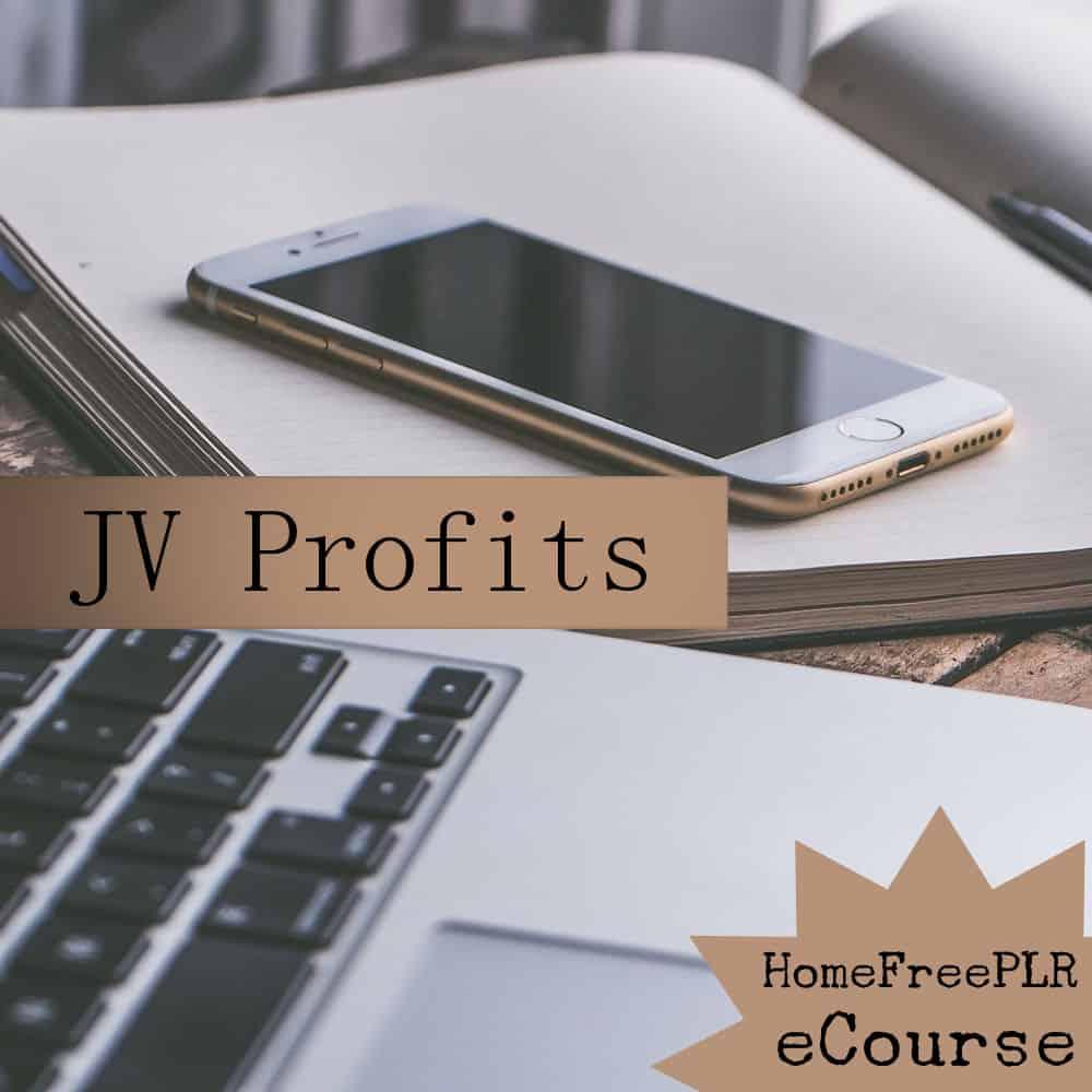 jv profits plr