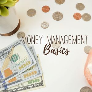 money basics plr