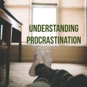 Procrastination PLR ecourse