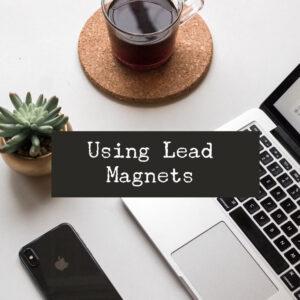 lead magnets plr