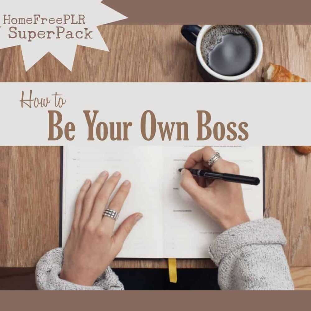 be your own boss plr